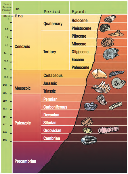 G101 Lab 6 Geologic Time Manual Guide