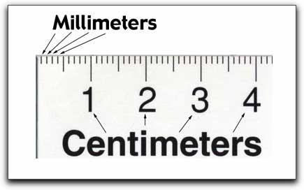 What does a metric ruler look like