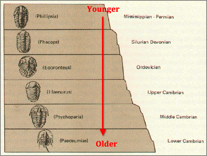 Absolute age dating of a rock 5